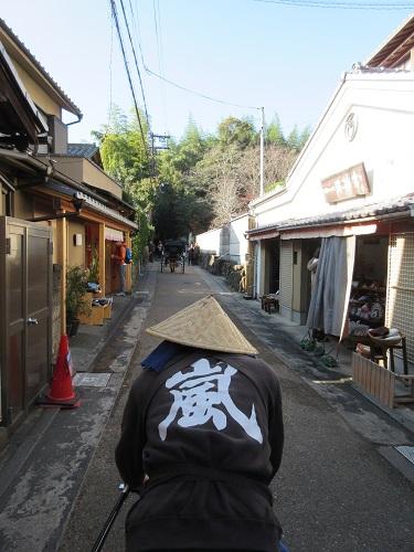 arasiyama3