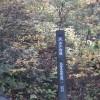 大山登山に初挑戦!紅葉が美しい!その2【三合目~五合目】