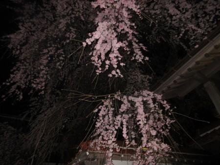 gokurakuji3
