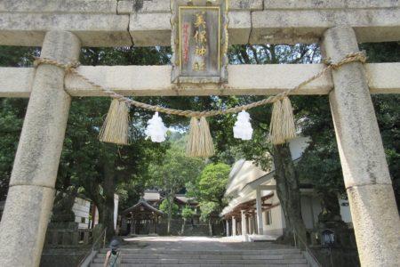 mihojinjya-a1