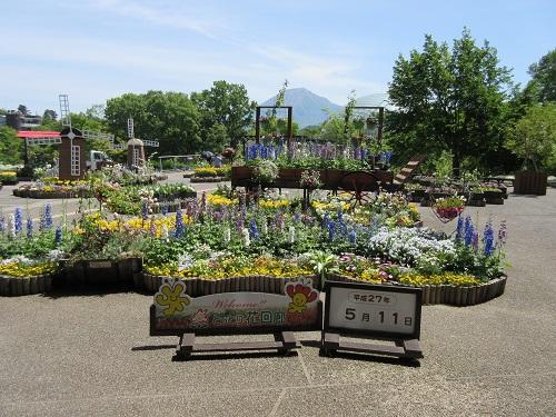 hanakairou6