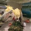 大恐竜展を見に鳥取県立博物館へ行ってきた
